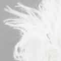 Echantillon fauve blanc